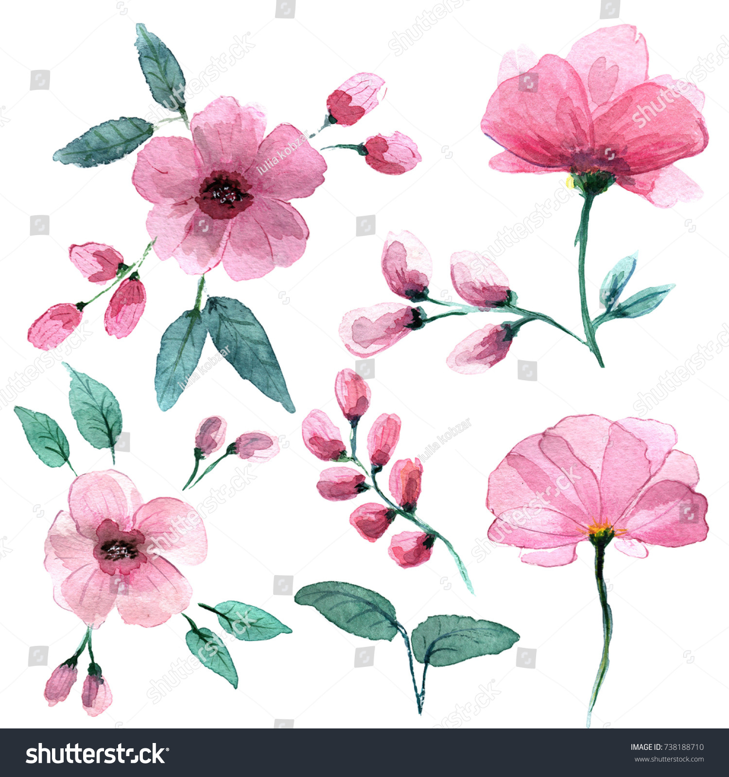 Delicate Pink Flowers Style Watercolors Stock Illustration 738188710