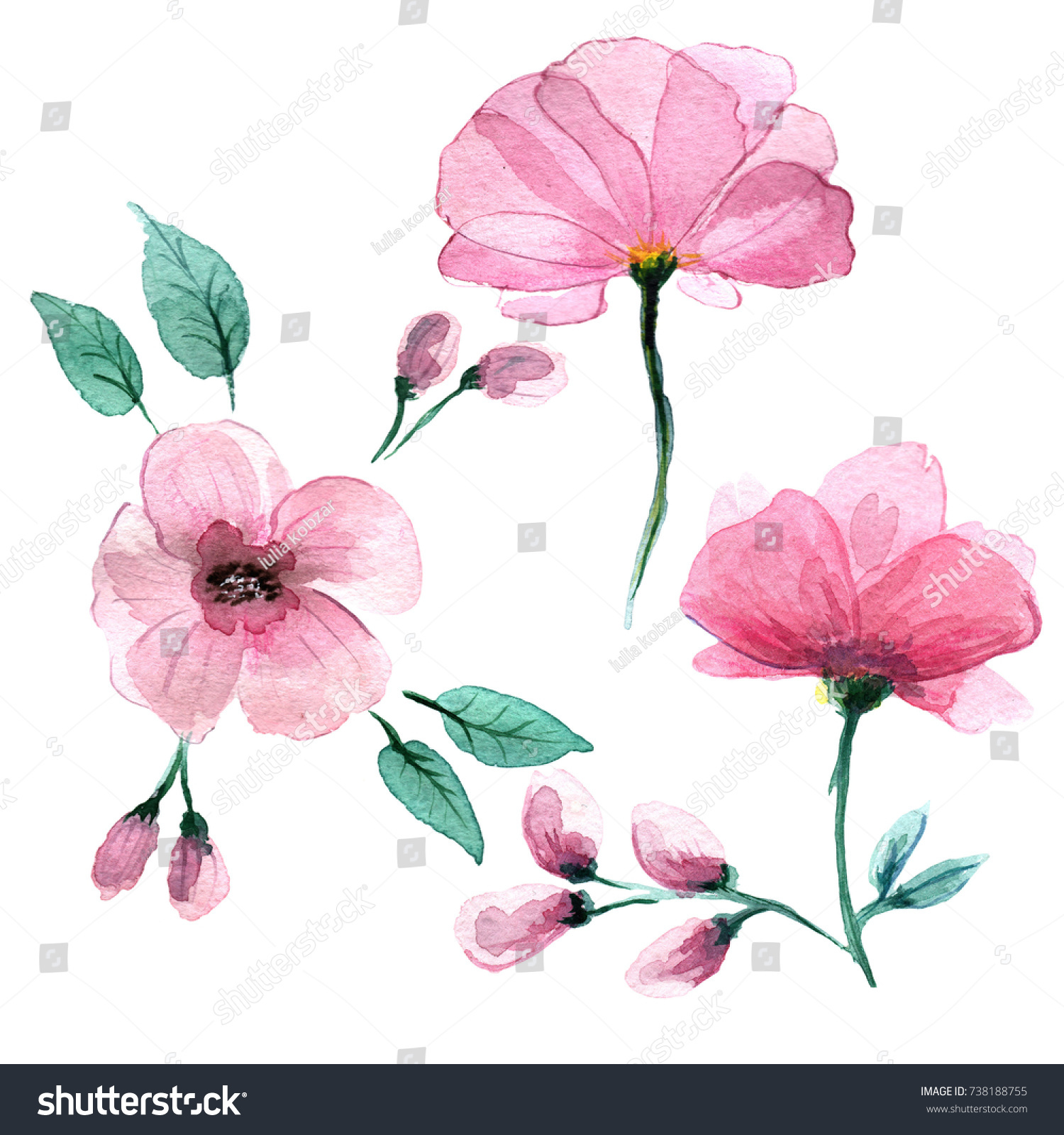 Delicate Pink Flowers Style Watercolors Stock Illustration 738188755