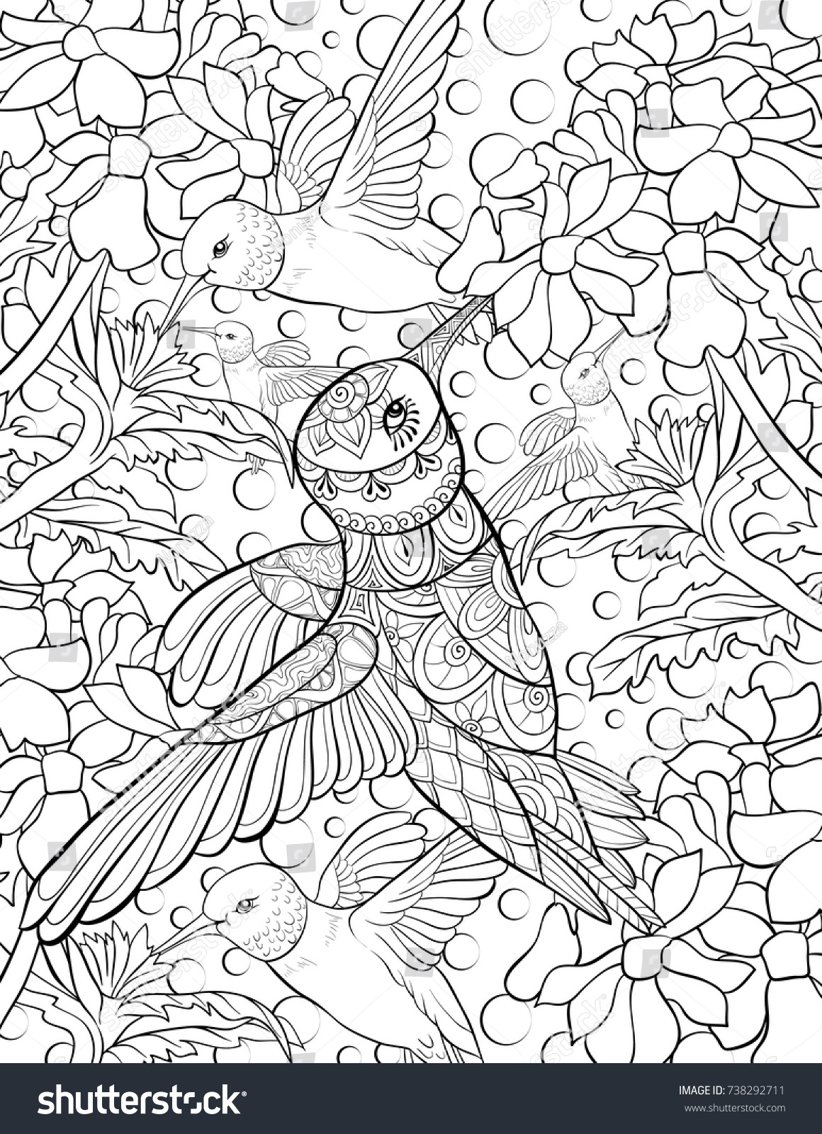 Adult coloring pagebook an hummingbird and flowers zen art style illustration