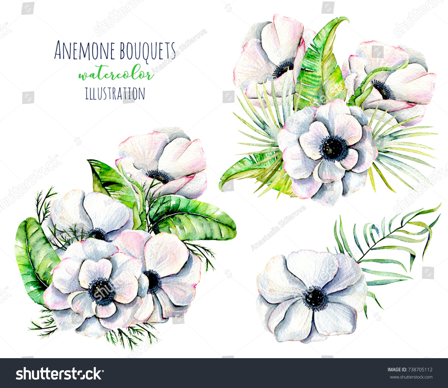 Watercolor White Anemone Flowers Bouquets Hand Stock Illustration ...