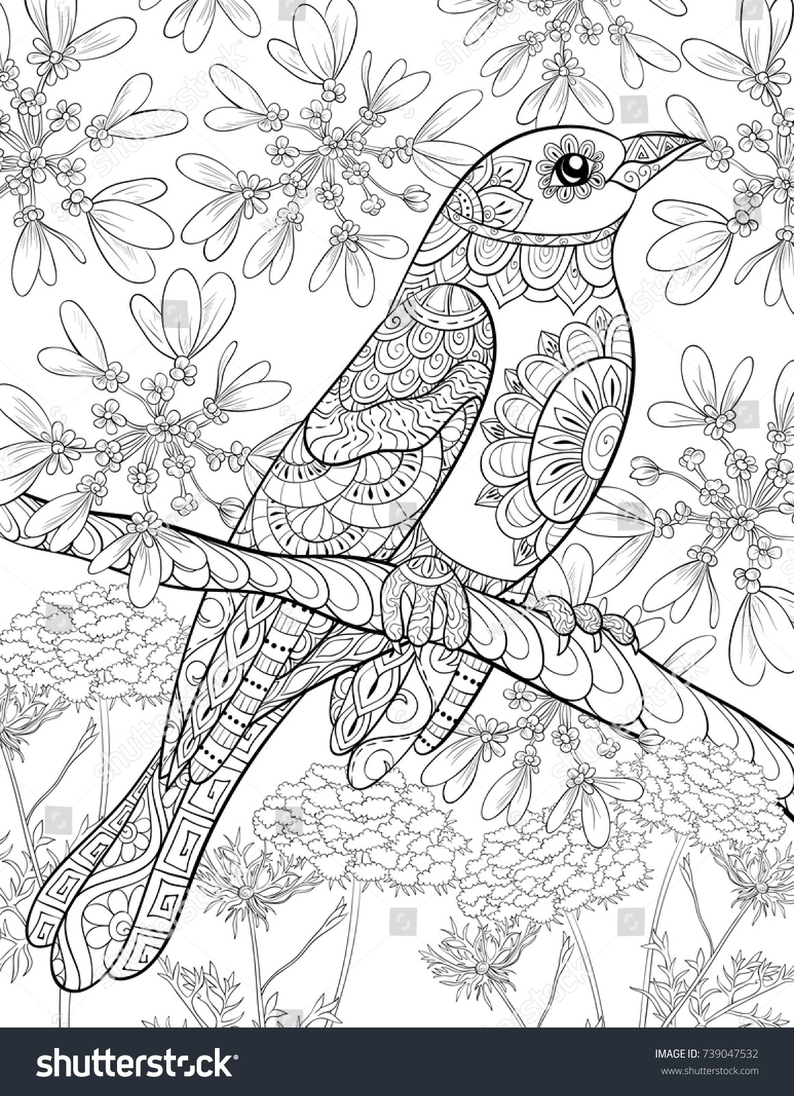 Adult coloring pagebook a cute bird on a brunch with a background zen