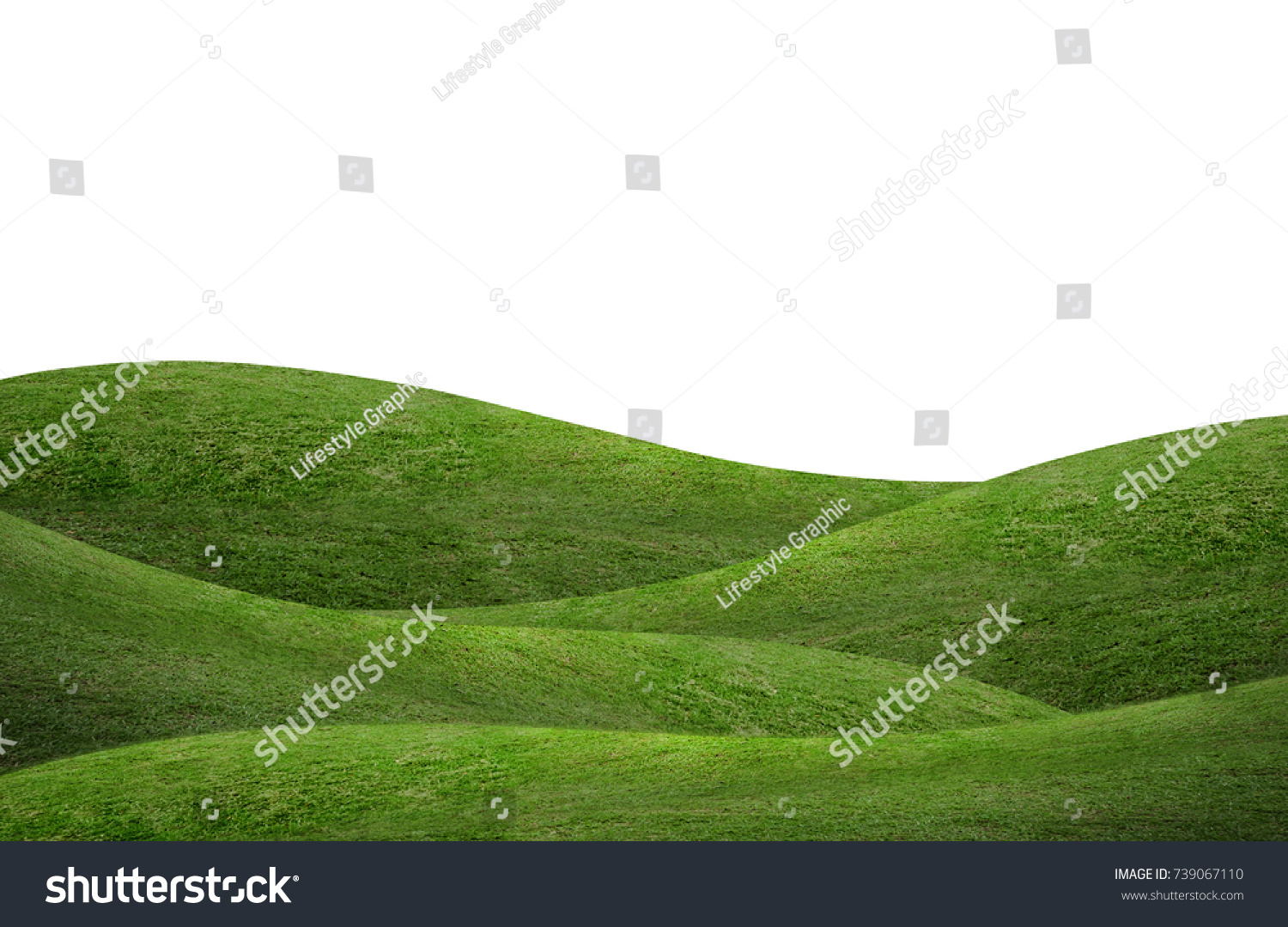 Green hill of grass field isolated on white background. #739067110