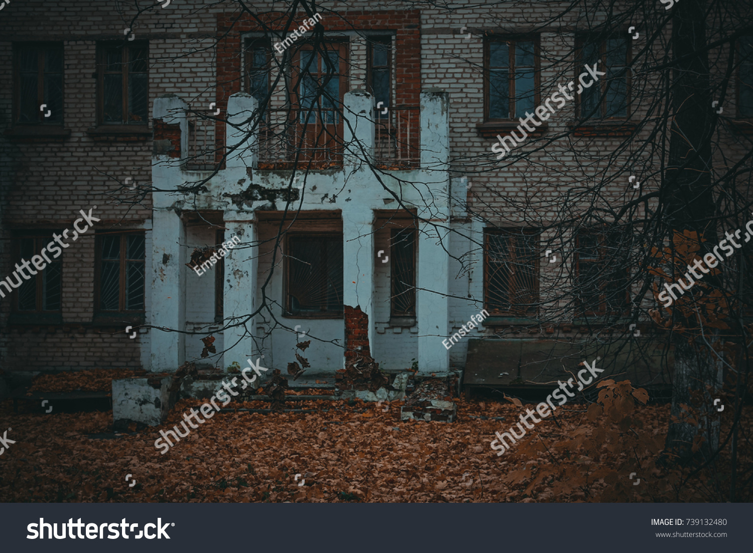 Leaf house frightening pictures