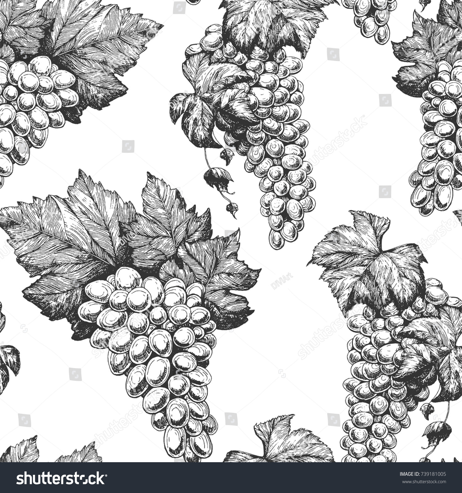 Grapes Seamless Pattern Hand Drawn Vector Stock Vector 739181005 ...