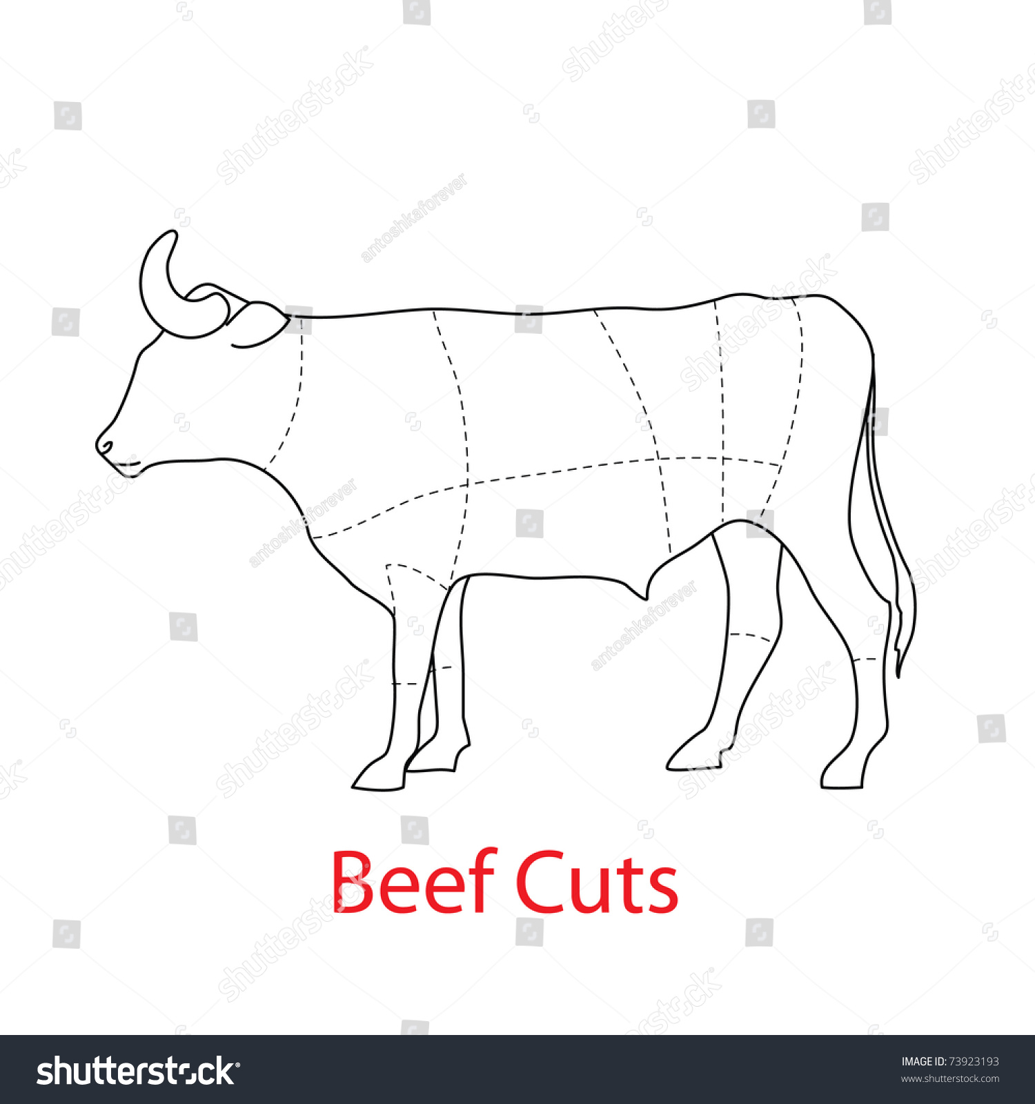 scheme template beef cuts stock vector royalty free 73923193