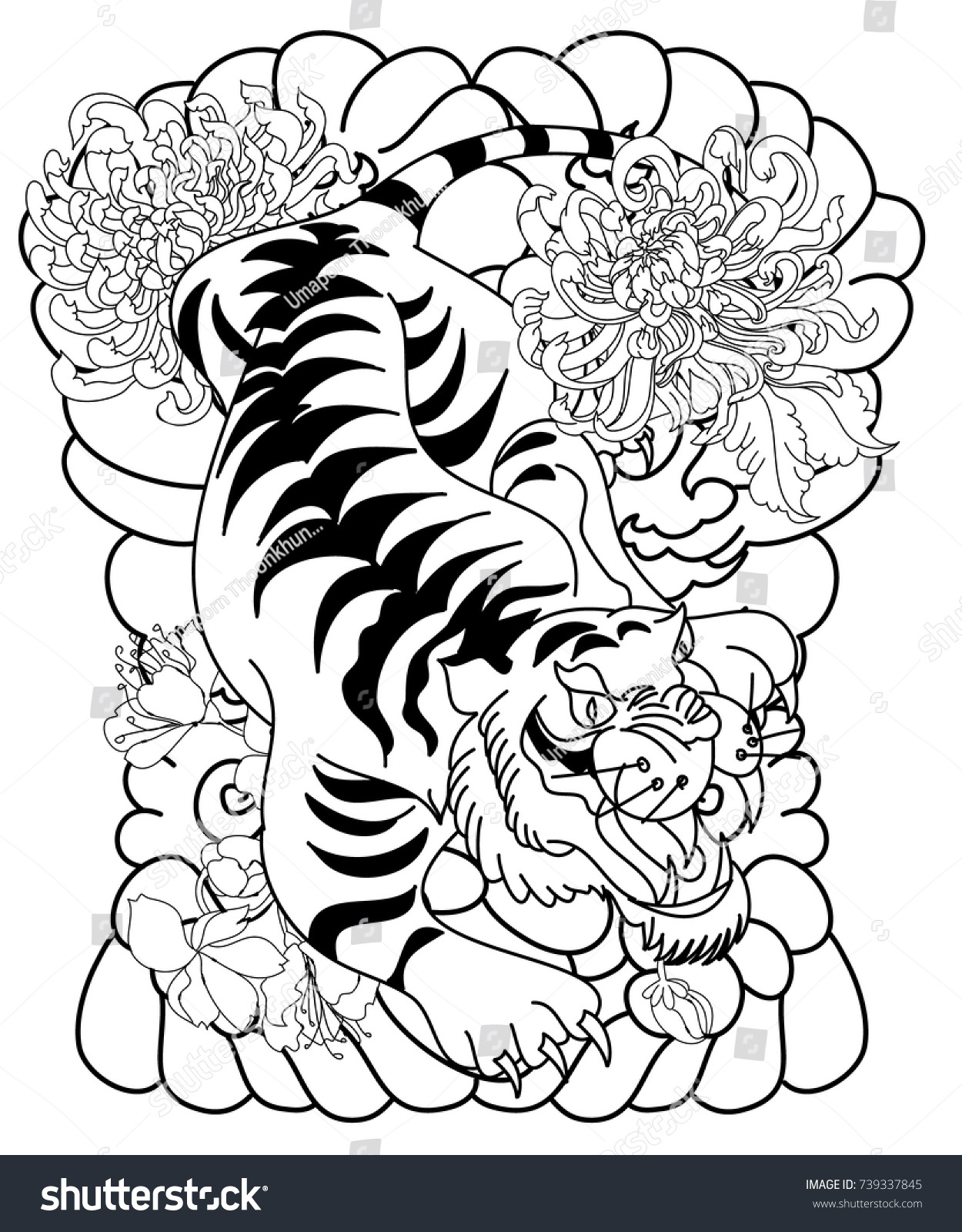 black white tiger tattootraditional tiger roaring stock vector
