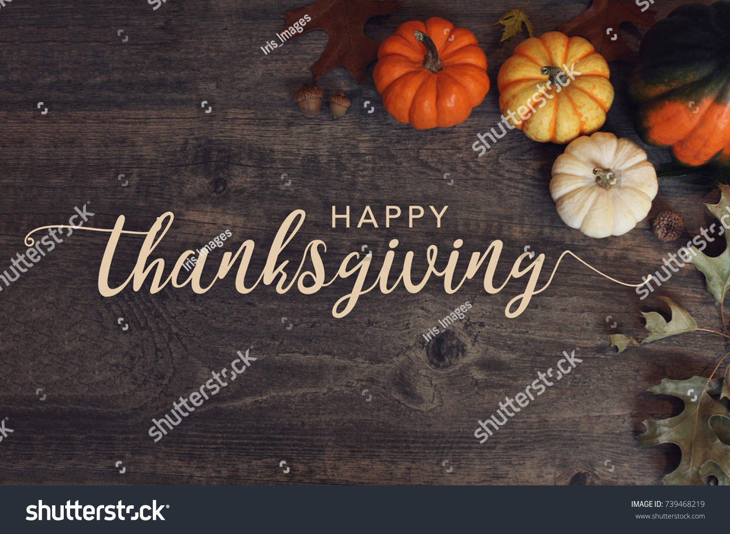 Happy Thanksgiving text with pumpkins and leaves over dark wood background #739468219 - 123PhotoFree.com