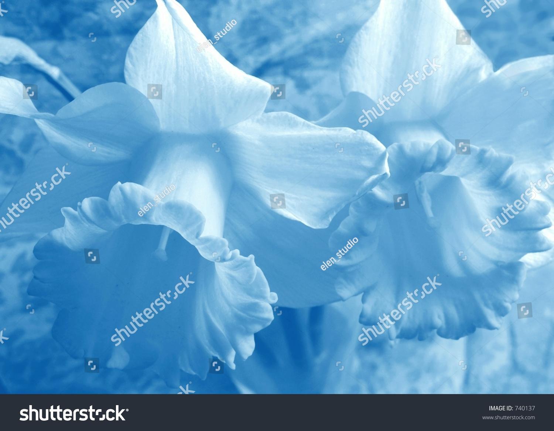 Soft Blue Flowers Background Stock Illustration 740137 Shutterstock