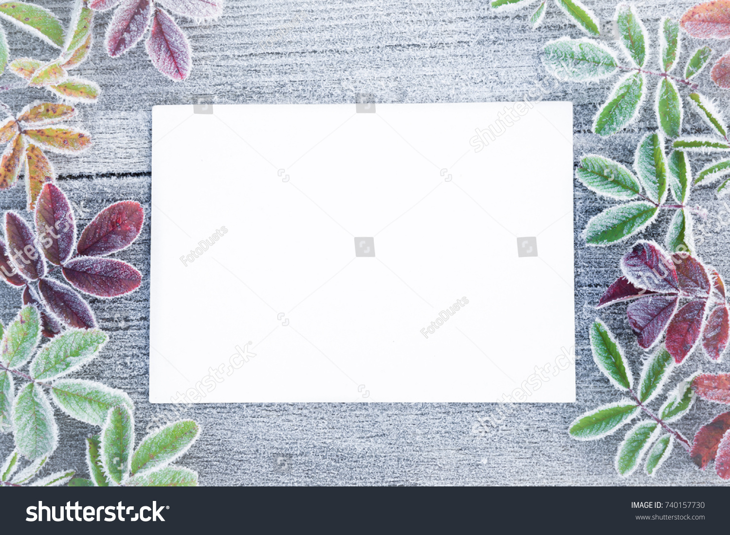 Icy White Blank Greeting Card Frozen Stock Photo Edit Now