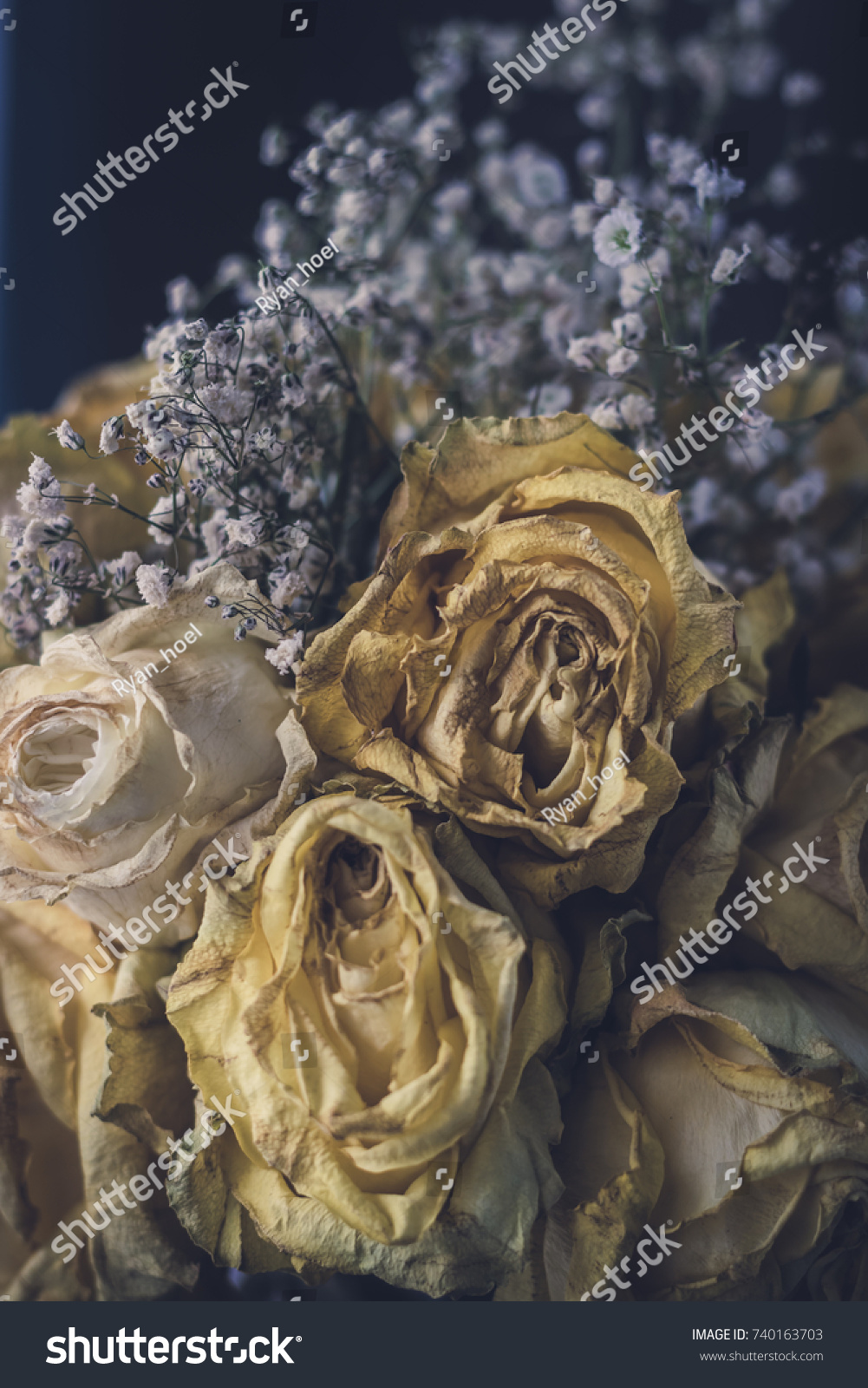 Bouquet White Yellow Roses Some Small Stock Photo Royalty Free