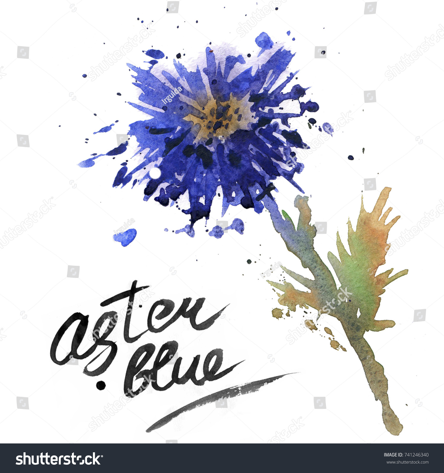 Blue Aster Flower Stock Illustration 741246340 Shutterstock