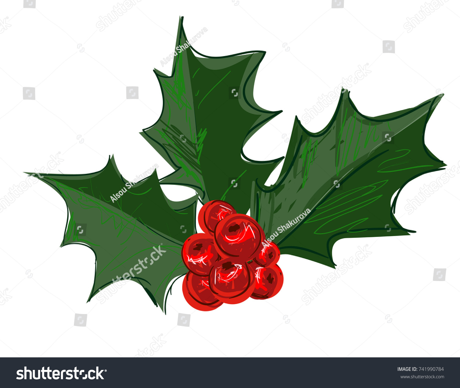 What Does the Christmas Holly Plant Represent ...