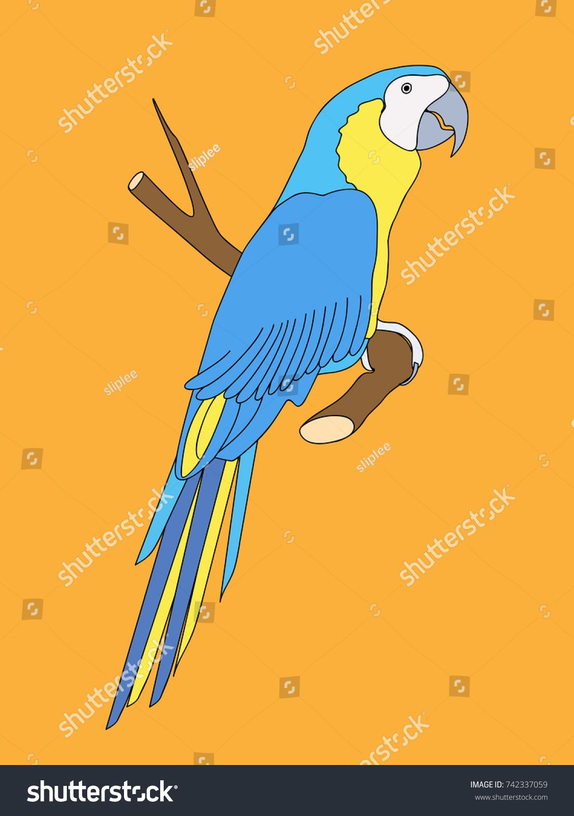 Luxury Parrot Wall Decor Pictures - Wall Art Collections ...