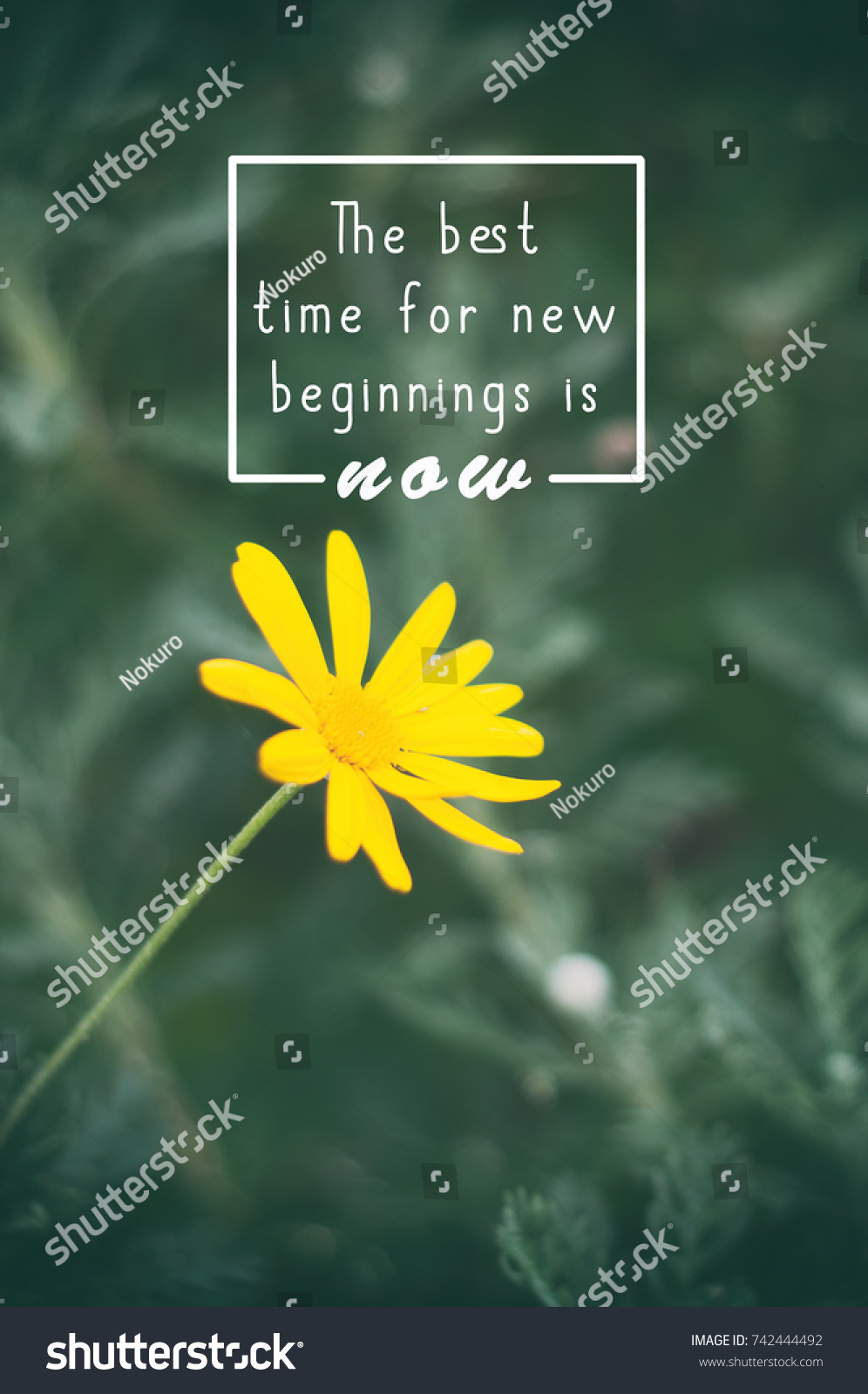 Life Inspirational Quotes Best Time New Stock Photo Edit Now