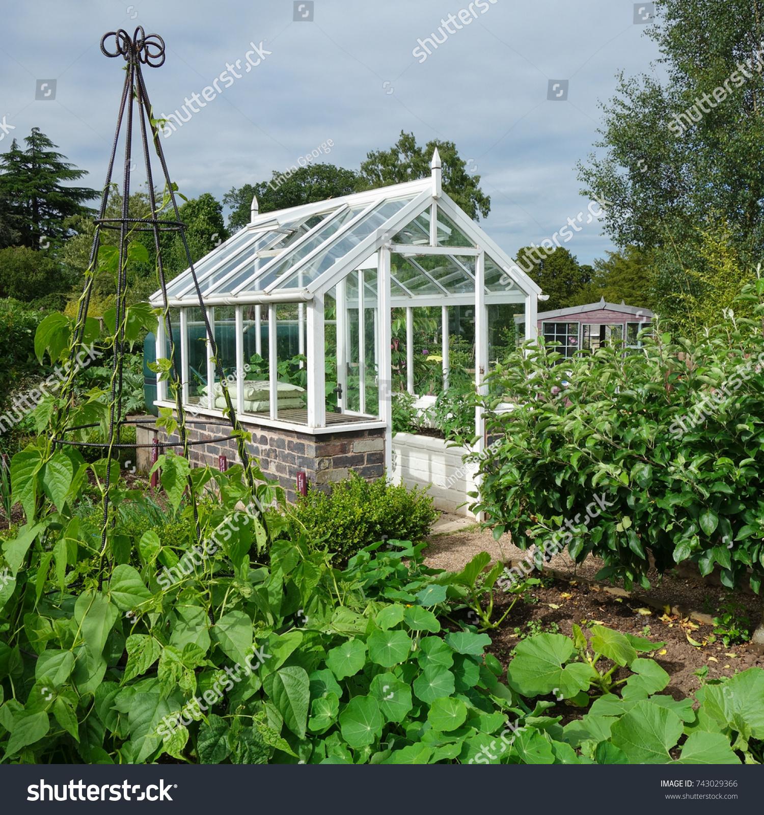 Greenhouse In English Vegetable Garden