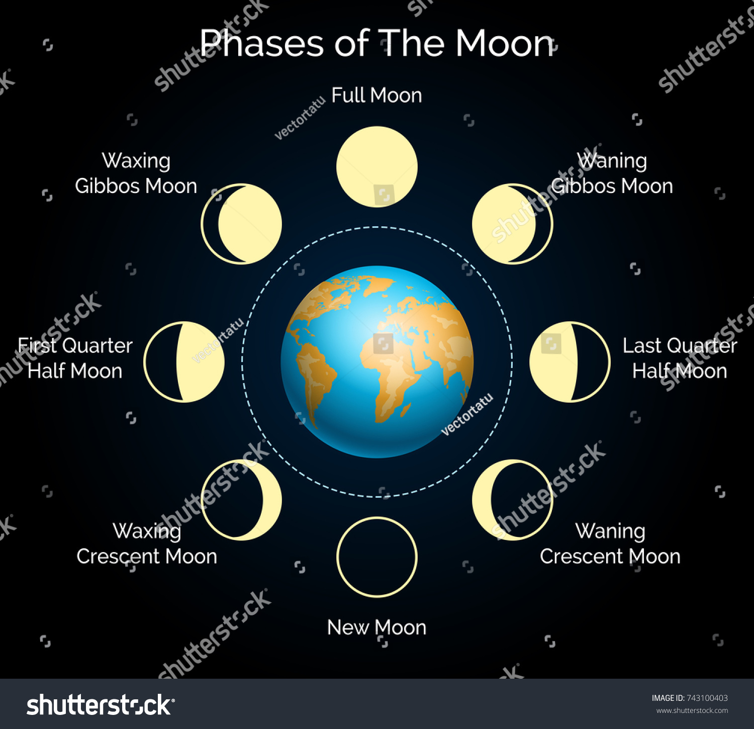Phases Moon Vector Illustration Earth Lunar Stock Vektorgrafik Diagram Of The And Phase Set With Shadow Moonlight