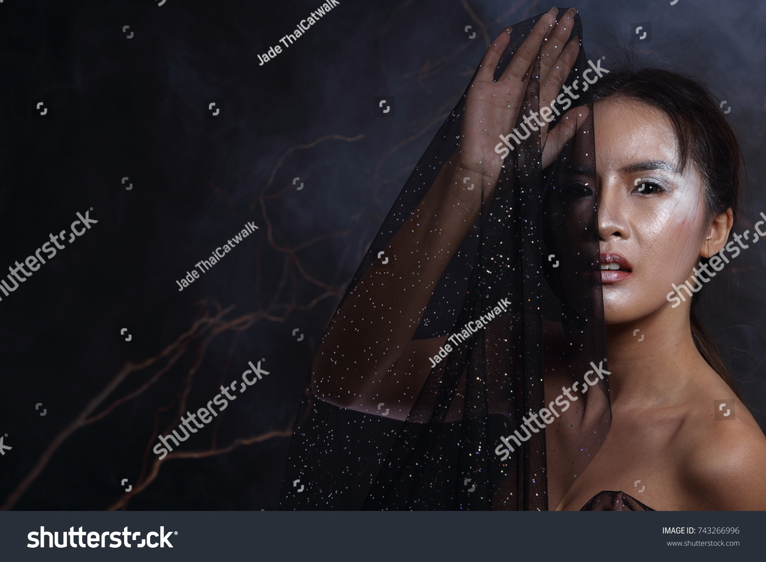 Beautiful Witchcraft Asian Woman In Scary Witch Snow Ghost Story Look Nake Shoulders Studio Lighting