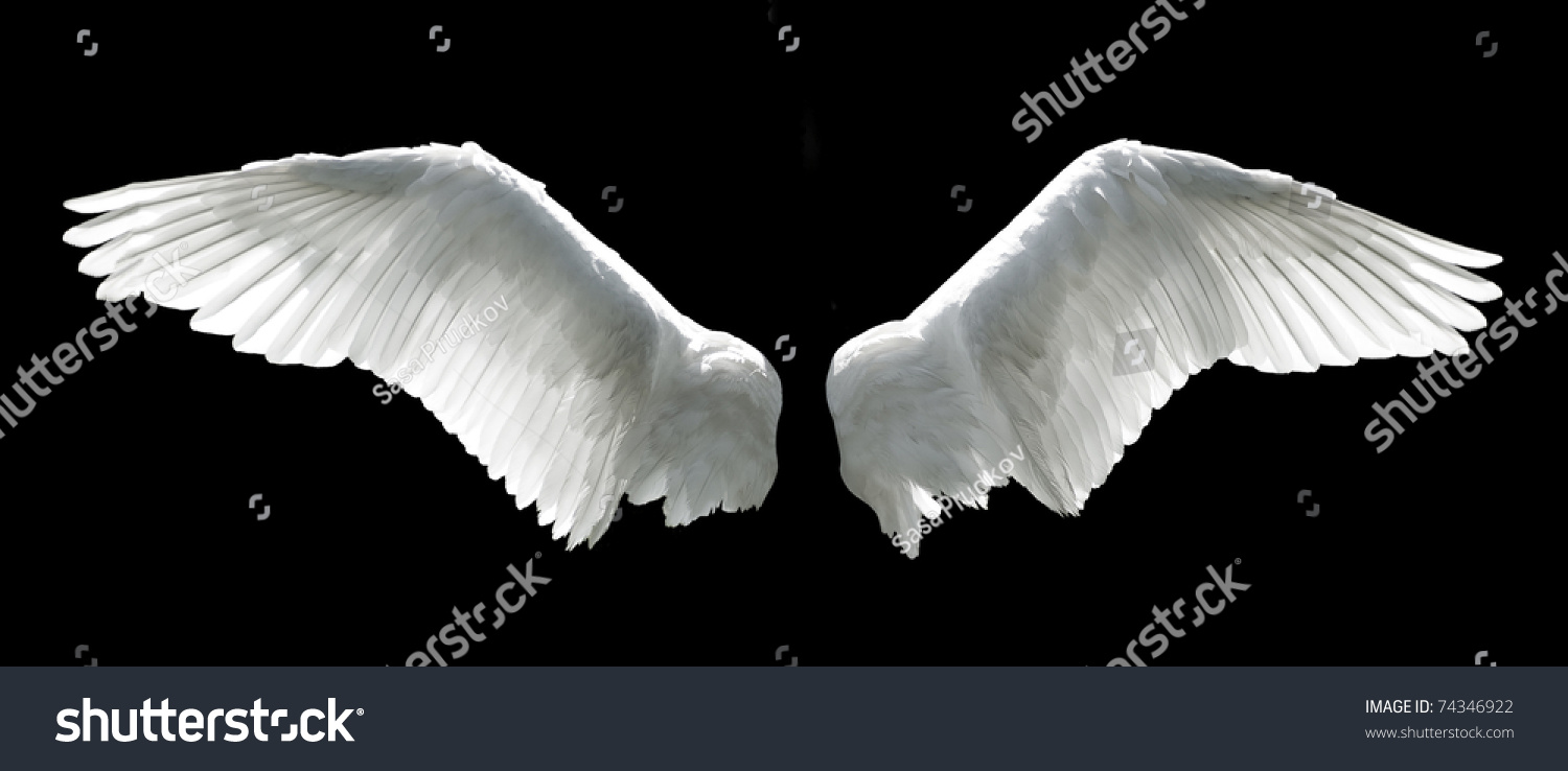 angel wings black background - photo #10