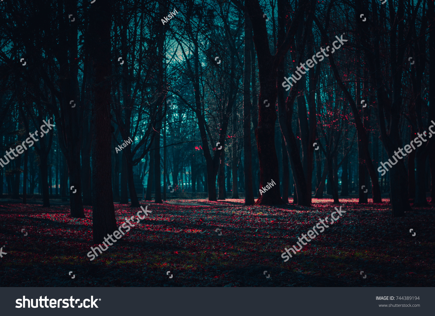 Mysterious fairy forest in a fog with red flowers lit by moonlight. #744389194