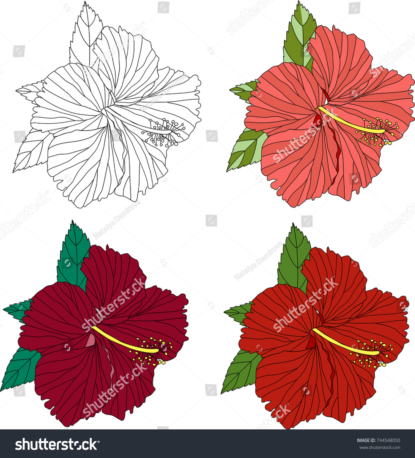 Four Flowers Hibiscus Different Color Variation Stock Vector (2018 ...