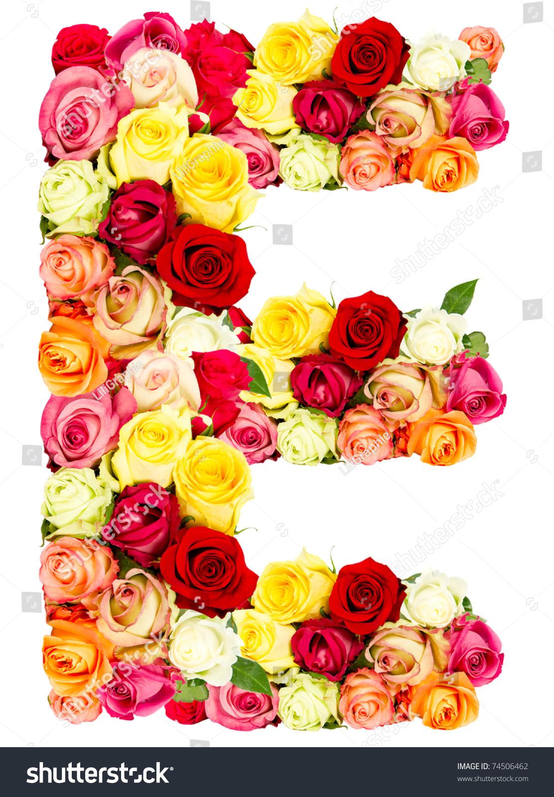 E Roses Flower Alphabet Isolated On Stock Photo Edit Now 74506462