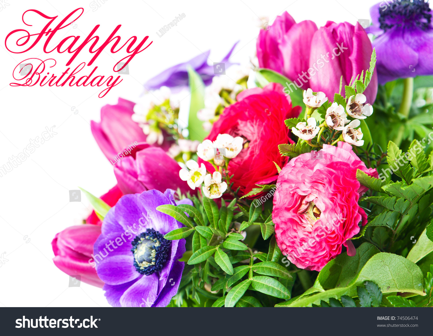 Birthday Flower Greetings Images Flower Wallpaper Hd