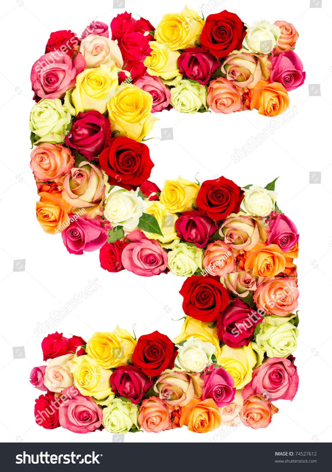 S Roses Flower Alphabet More Letter Stock Photo 74527612