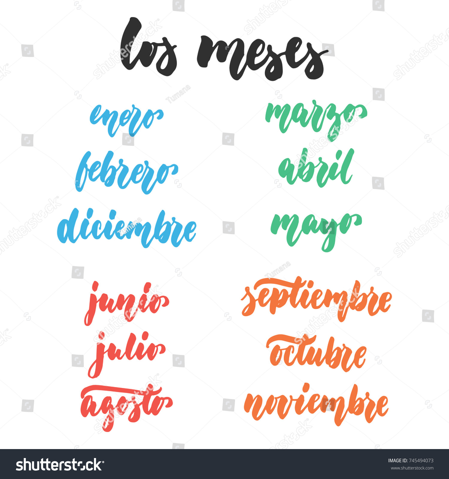 Los Meses Months Spanish Hand Drawn Stock Vector Royalty Free