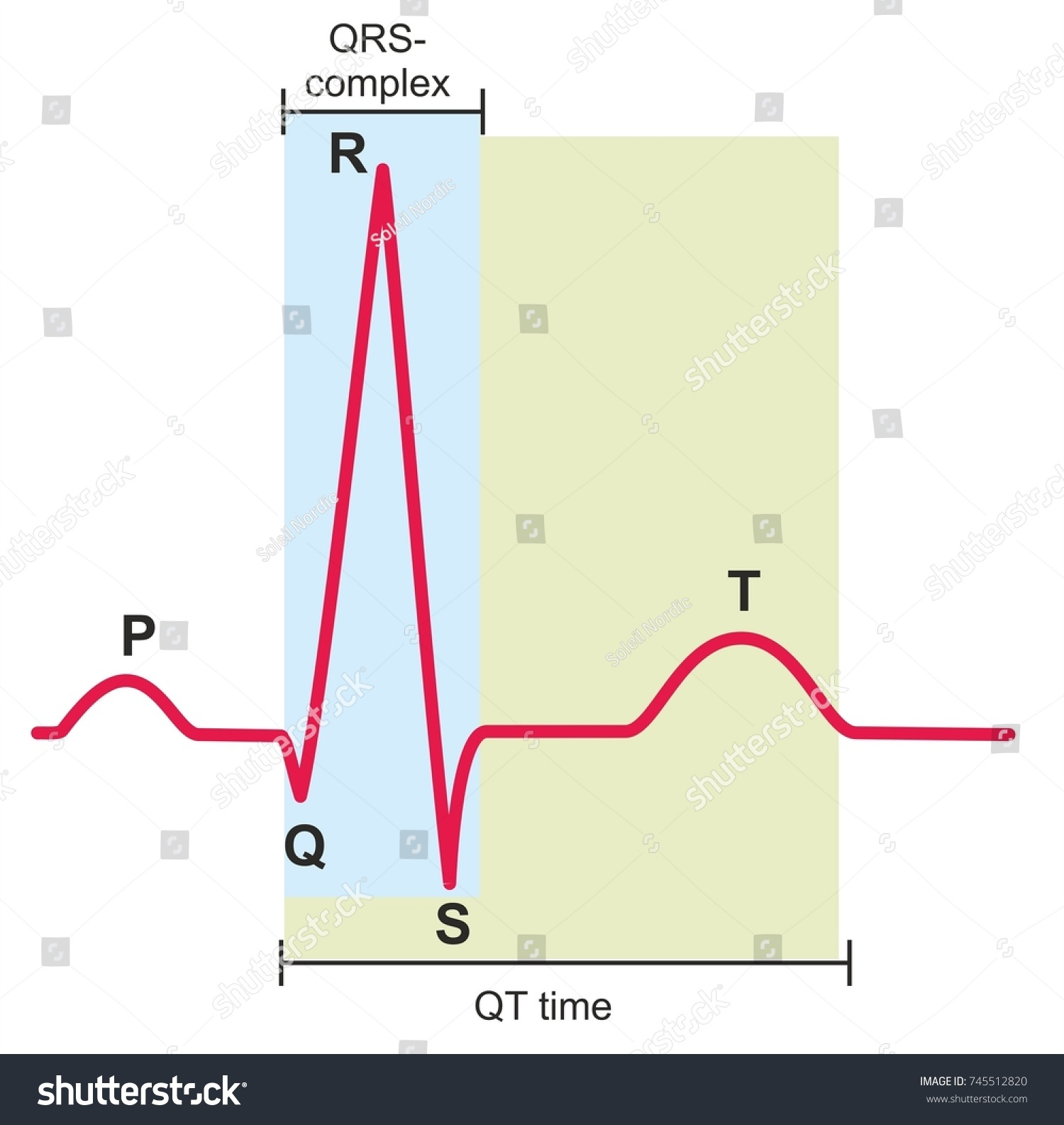 Electrocardiography ecg ekg graph heart normal stock illustration electrocardiography ecg or ekg graph of a heart in normal rhythm pooptronica Images