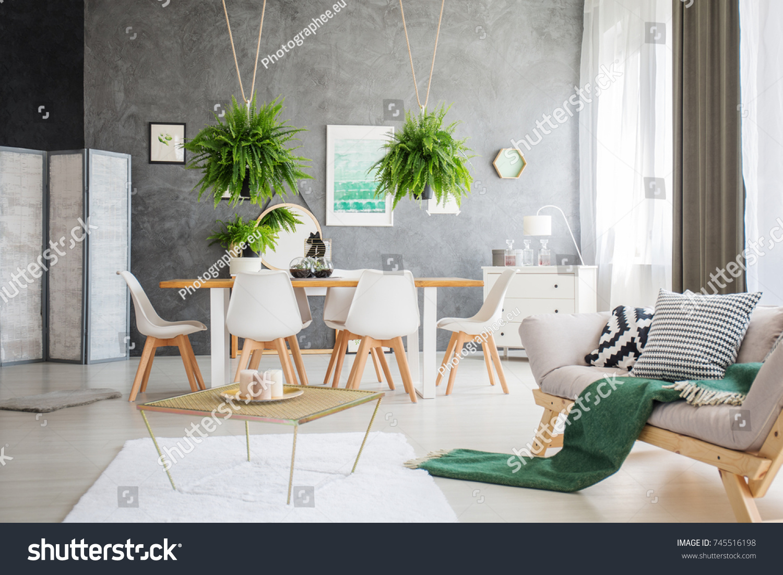 Admirable Green Blanket On Grey Sofa Multifunctional Stock Photo Edit Creativecarmelina Interior Chair Design Creativecarmelinacom