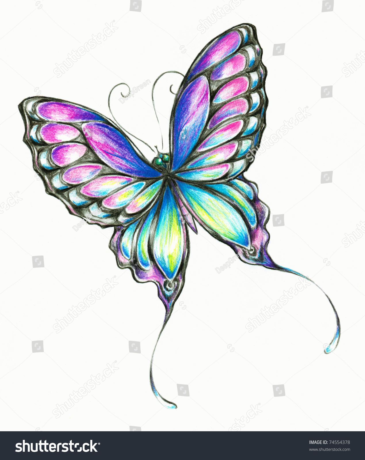 Delicate Colorful Butterfly Hand Paintedpicture Have Stock ...
