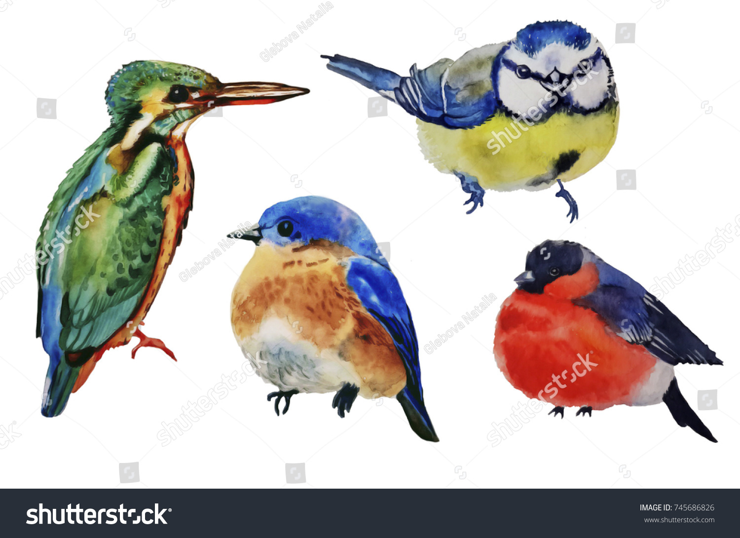 Watercolor Bright Birds Greeting Cards Invitations Stock