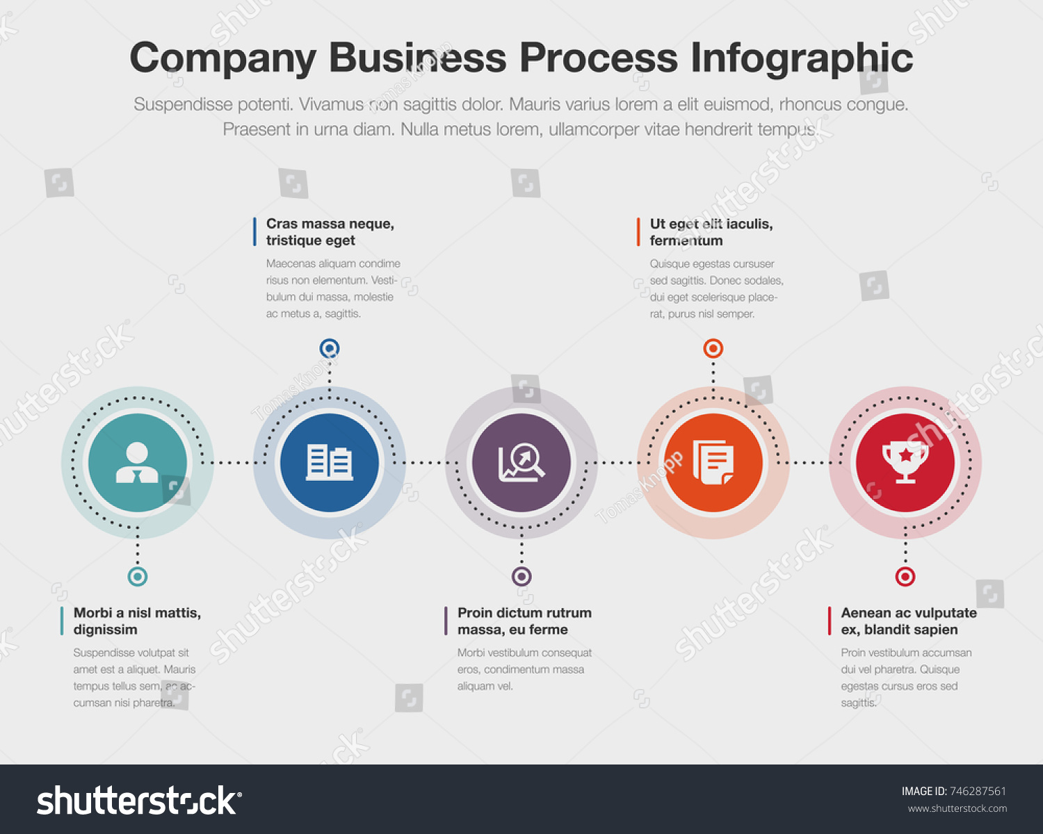 vector infographic company business process template isolated on light background