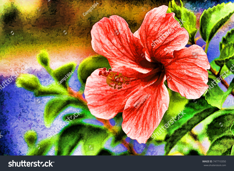 Oil Painting Beautiful Lotus Flower Stock Illustration 747710350