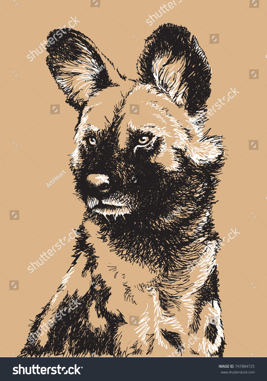Black and white sketch of an african wild dogs head vector illustration