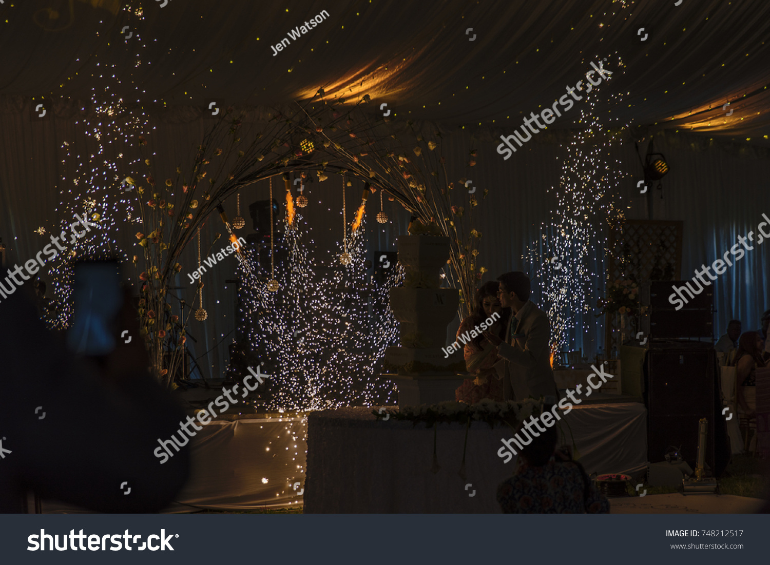subdued lighting. Dazzling Indoor Fireworks And Subdued Lighting Create A D