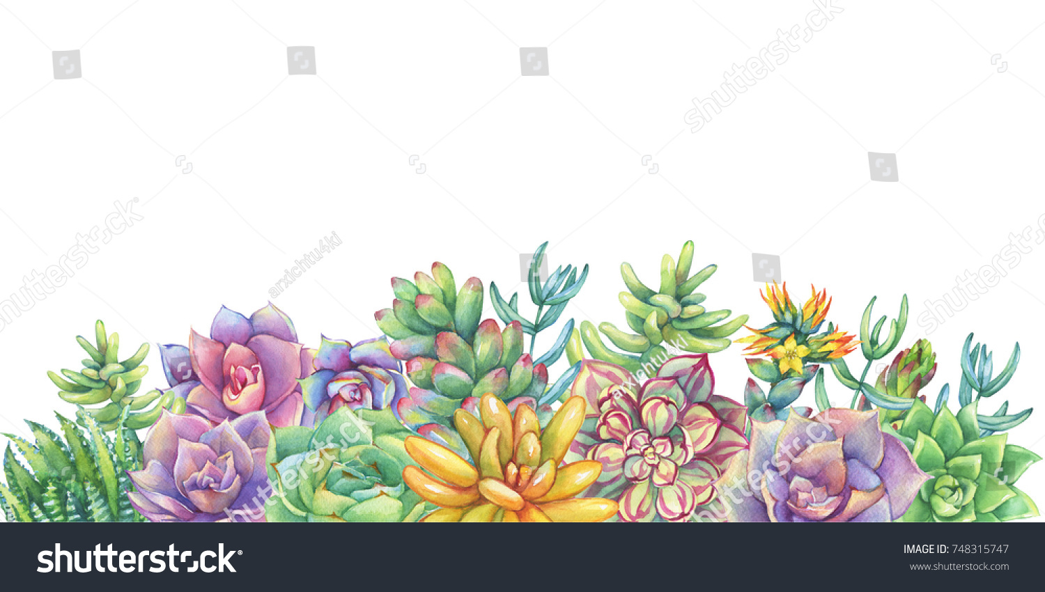 Royalty Free Stock Illustration of Greeting Card Border Frame Leaves ...