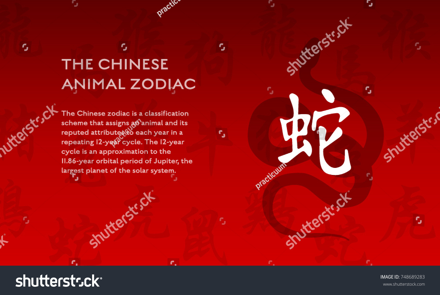 Chinese New Year Zodiac Snake Animal Stock Vector Royalty Free