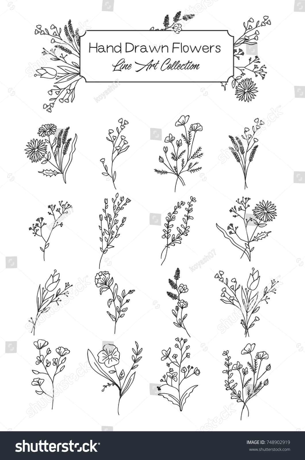 Vector Collection of Hand Drawn Wild Flowers #748902919
