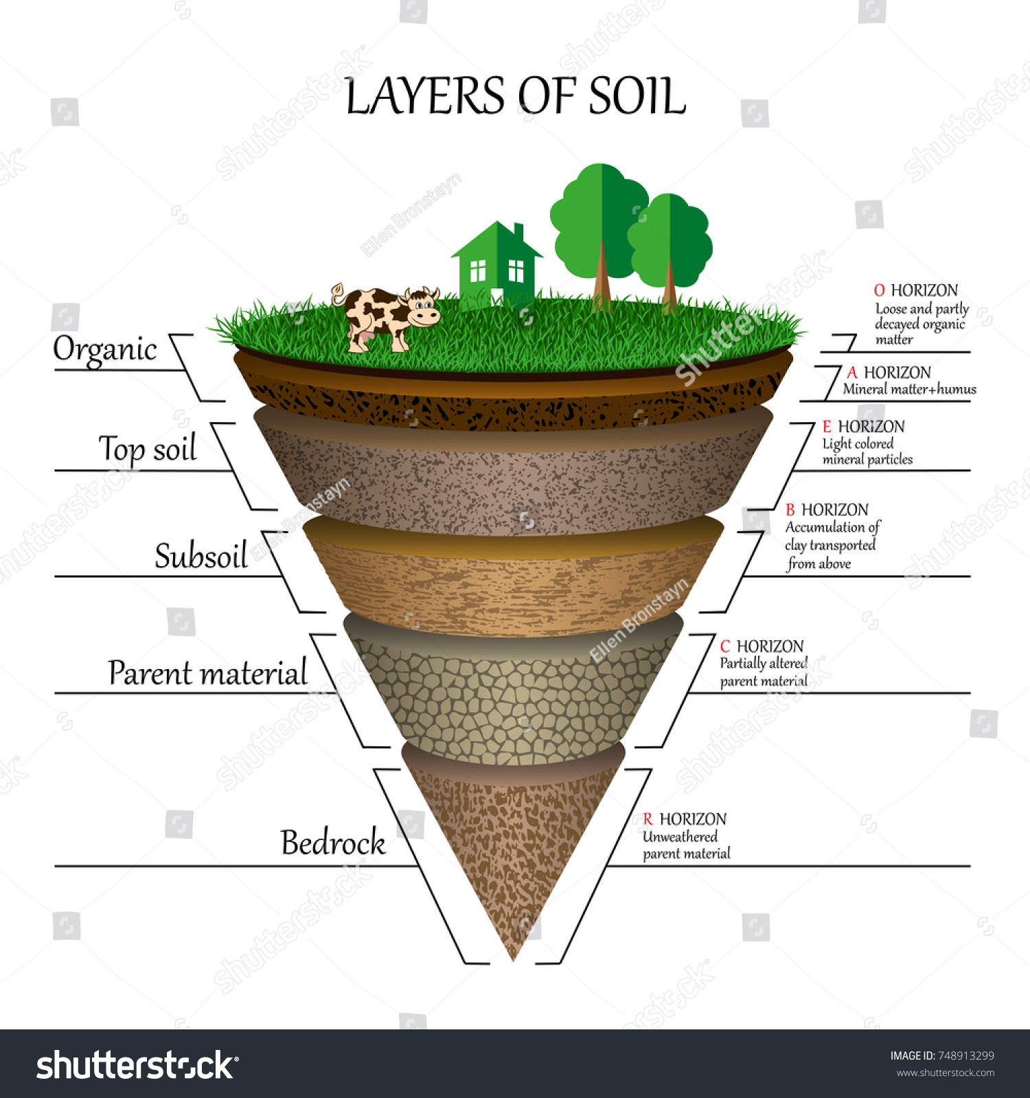 Layers soil education diagram mineral particles stock vector layers of soil education diagram mineral particles sand humus and stones pooptronica Images