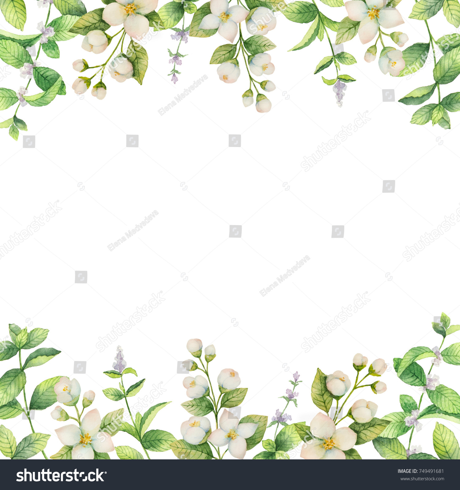 Watercolor Frame Flowers Jasmine Mint Branches Stock Illustration