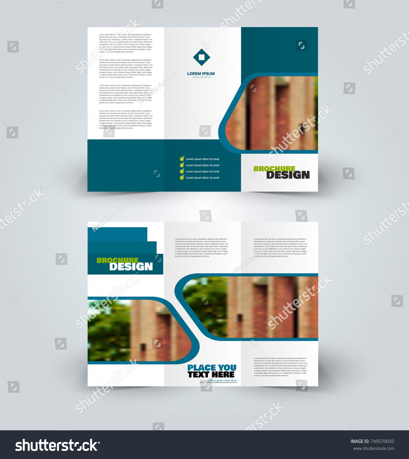 brochure template business trifold flyer creative stock vector