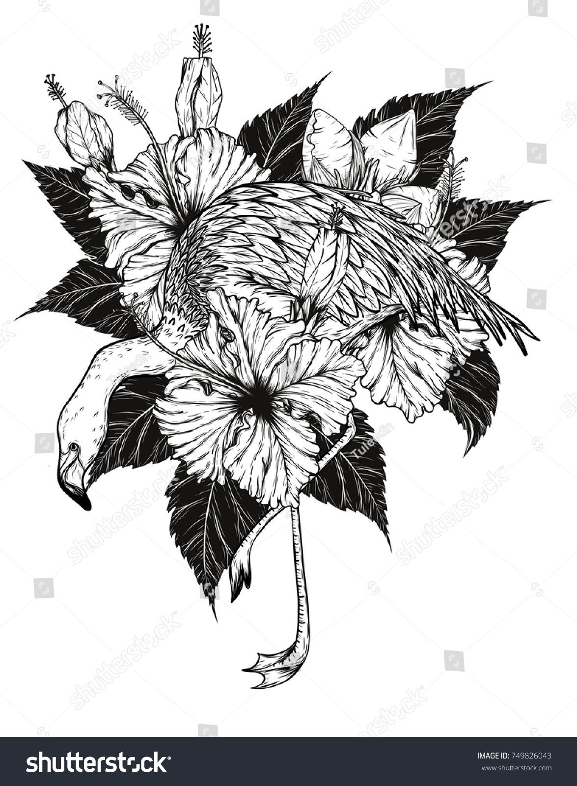 Flamingo Hibiscus Vector By Hand Drawing Birds Stock Vector Royalty