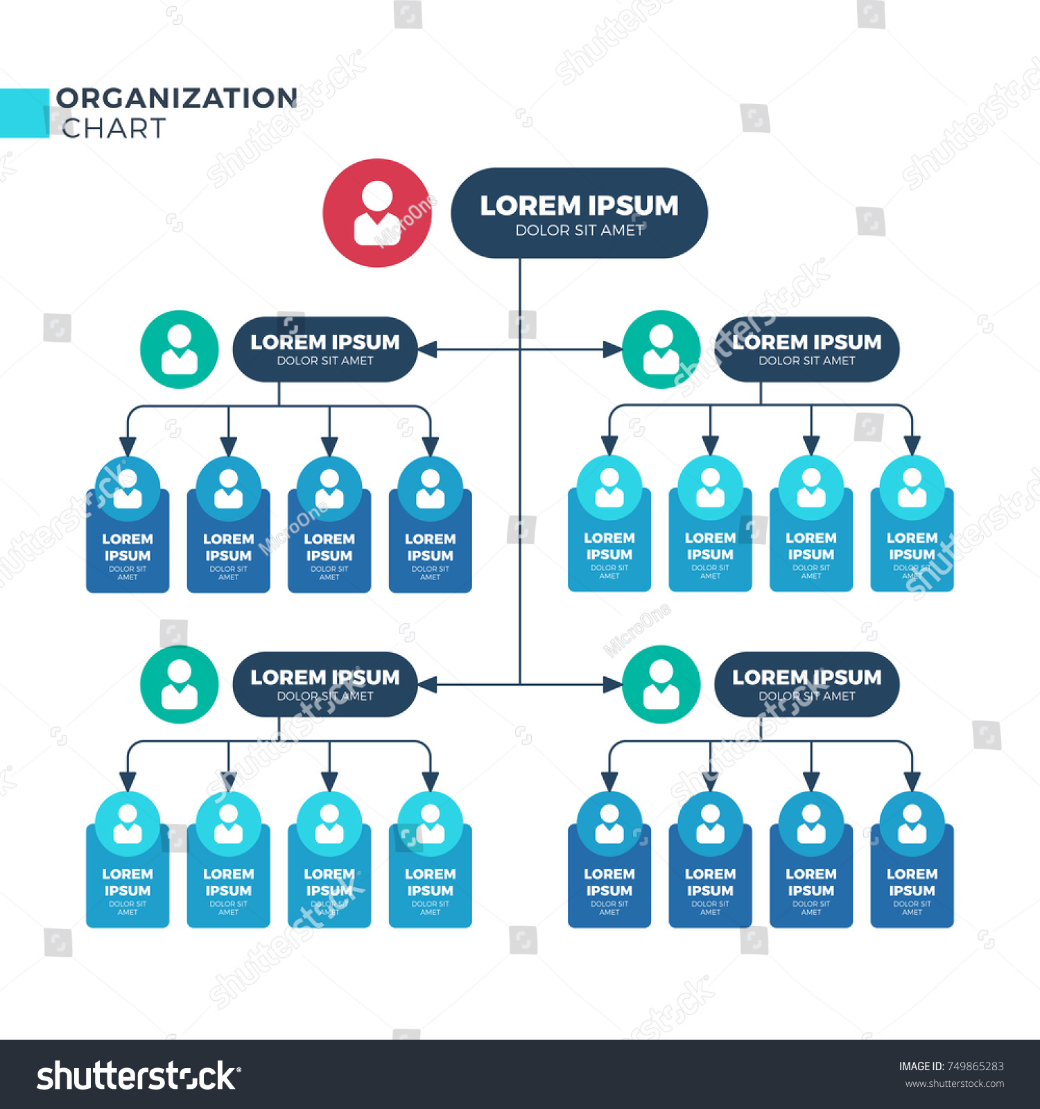 business structure organization vector organizational structural の