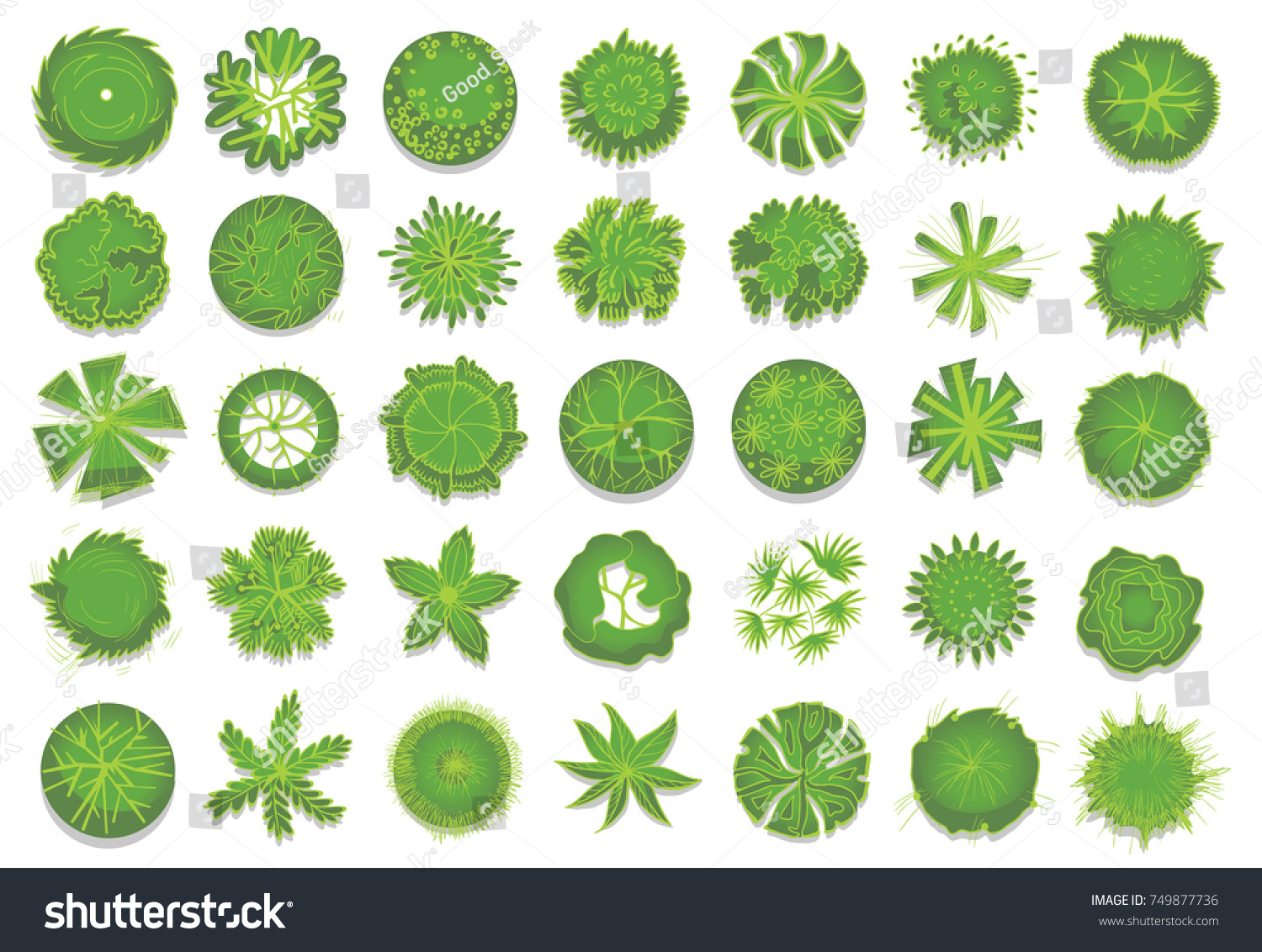 Various Green Trees Bushes Shrubs Top Stock Vector (Royalty