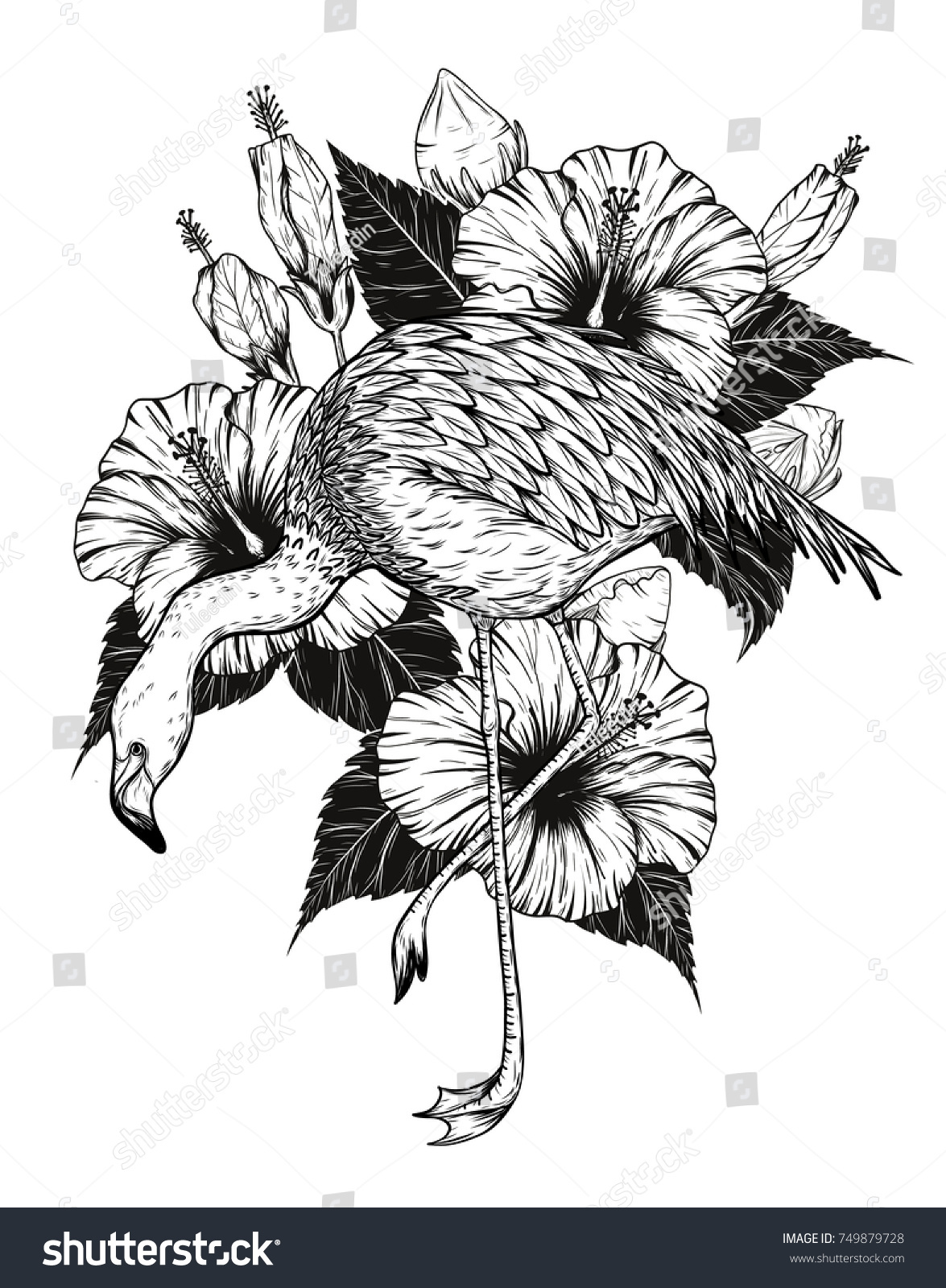 Flamingo Hibiscus Vector By Hand Drawing Stock Vector Royalty Free