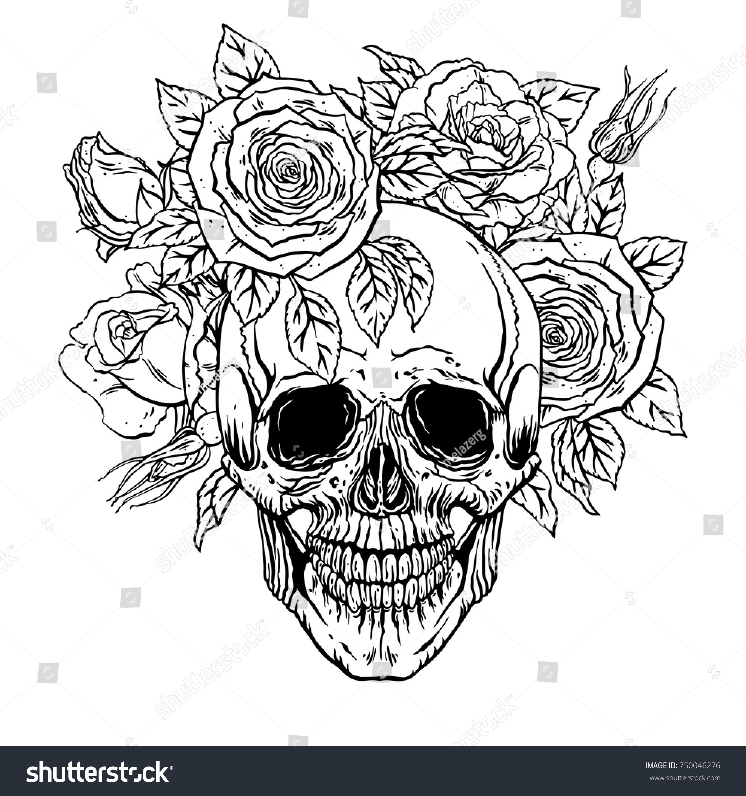 Hand Drawn Illustration Of Anatomy Human Skull With A Lower Jaw And