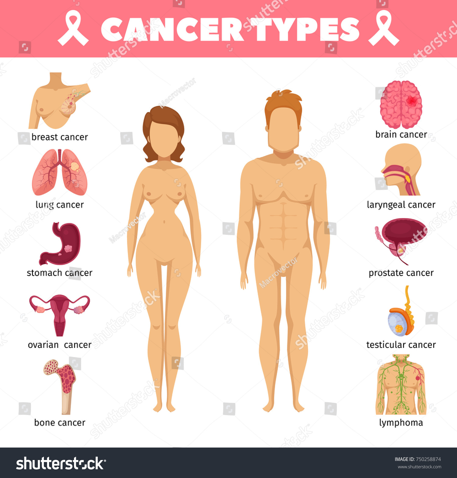 Cancer Types Set Breast Lung Stomach Stock Vector 750258874