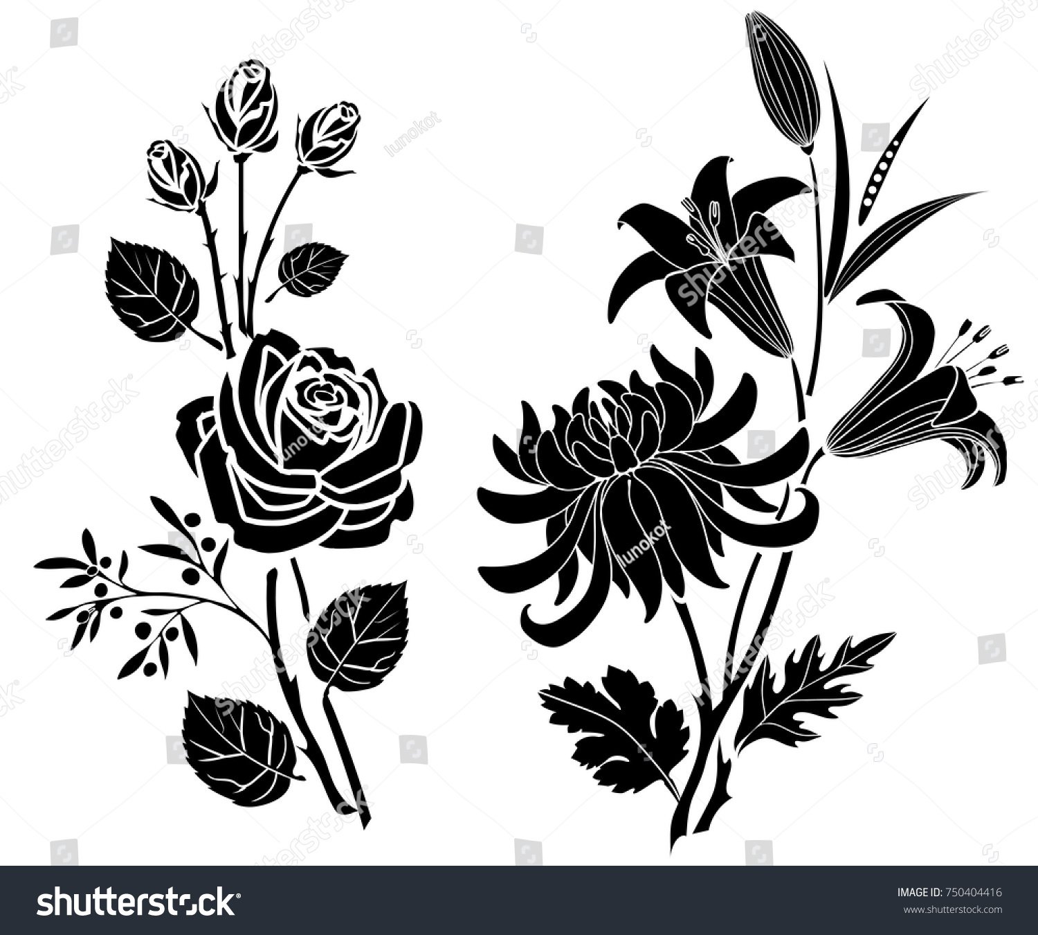 Rose Lily Chrysanthemum Tattoo Silhouette Flowers Stock Vector