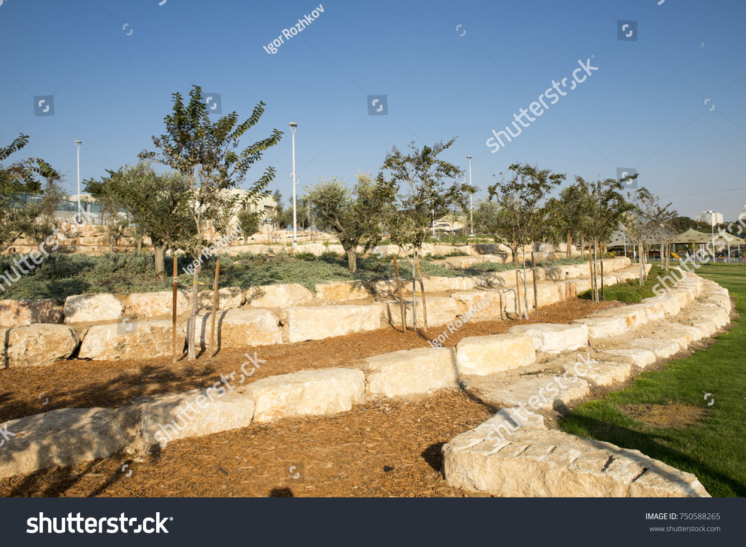 Beer Sheva Israel October 23 2017 Stock Photo (Royalty Free ...